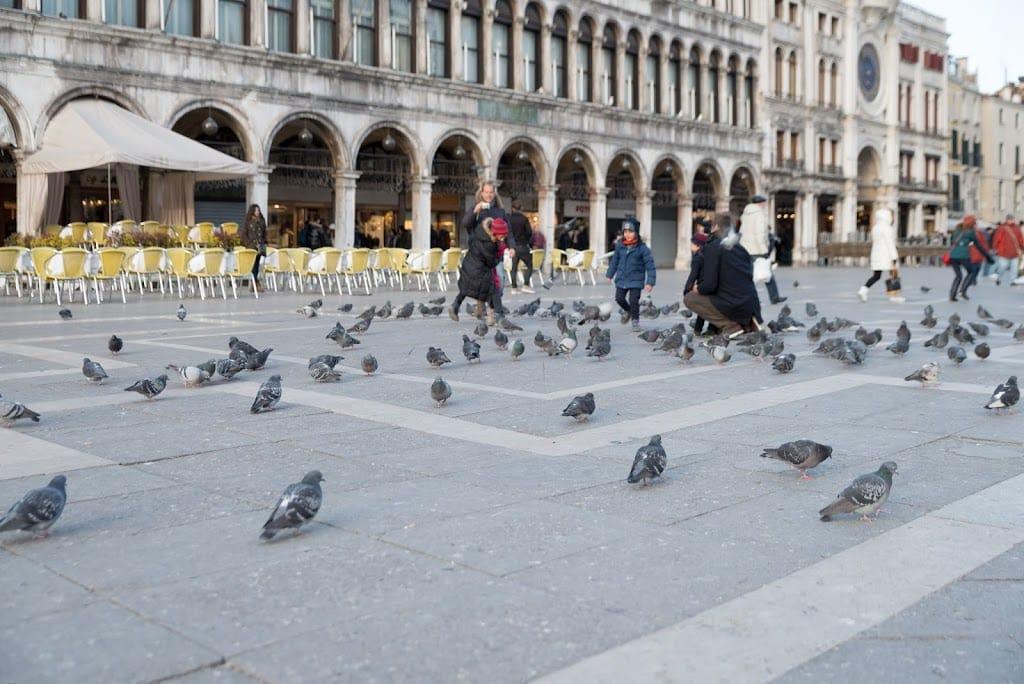 An Icy Venice Italy