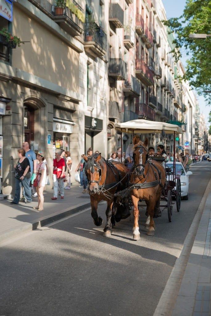 Horse drawn carriage in Barcelona Las Ramblas