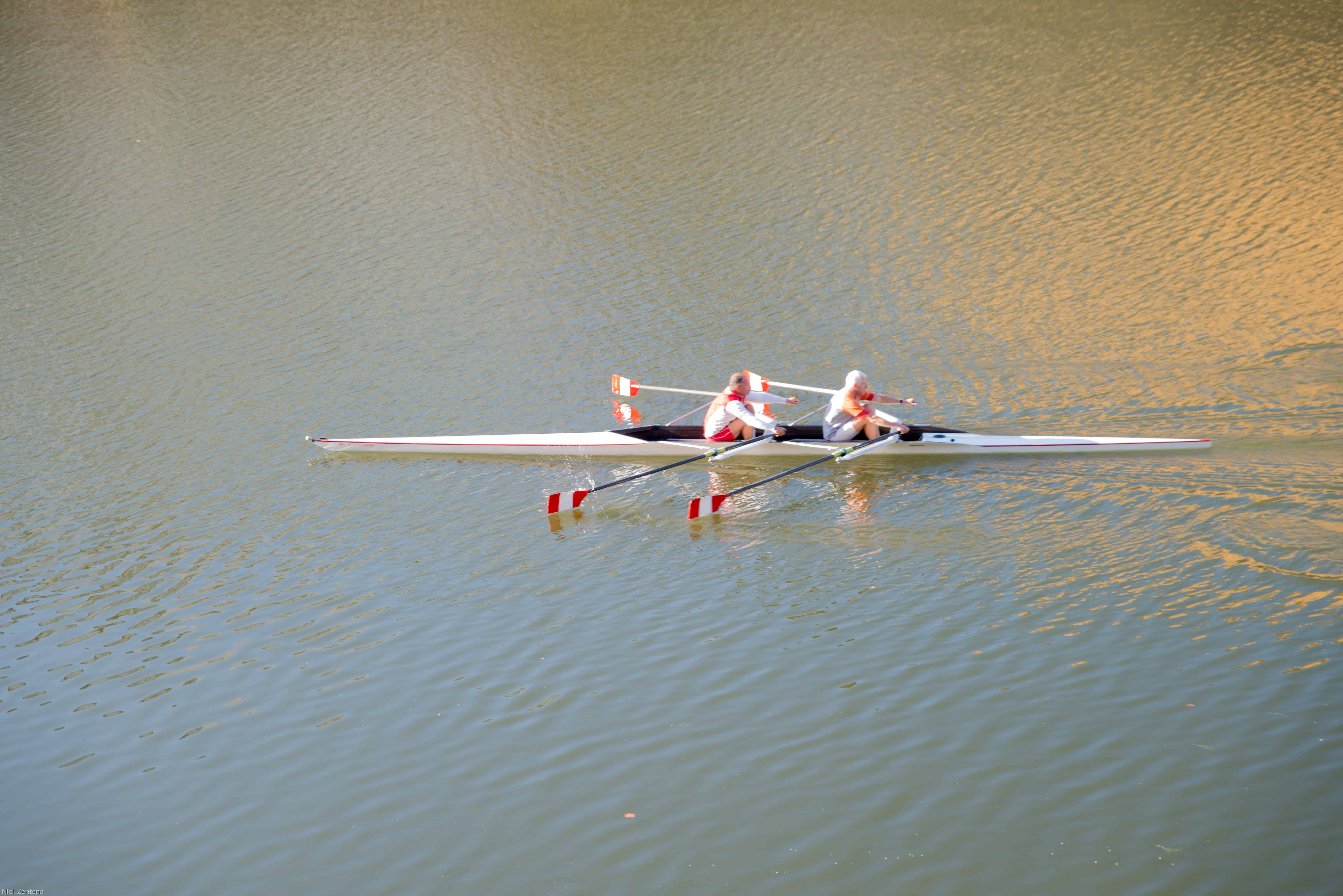 Rowers on the Arno River Florence Italy